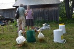 The ducks check everything over before the session begins.